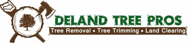 DeLand Tree Pros